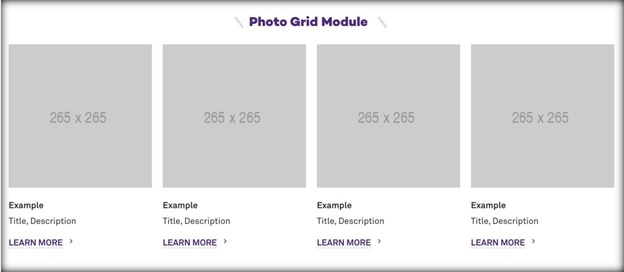 This image has a screenshot of the photo grid module, with four photos side by side with text underneath each